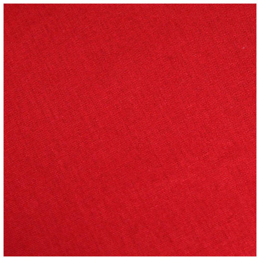 Fondo De Estudio 3x6m Rojo Borgoña